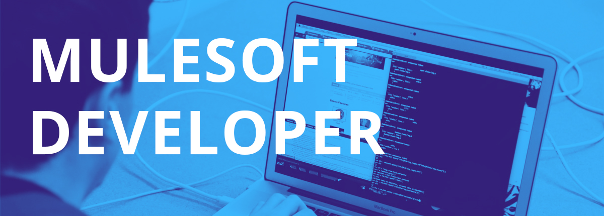 (Senior) MuleSoft Developer